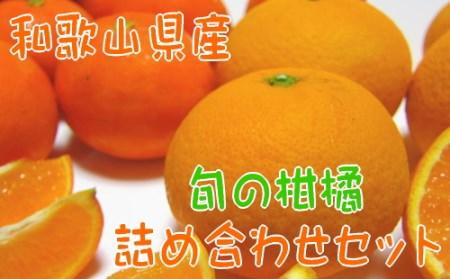 【農家直送】旬の濃厚柑橘詰め合わせセット(ご家庭用)3kg【北海道・沖縄配送不可】