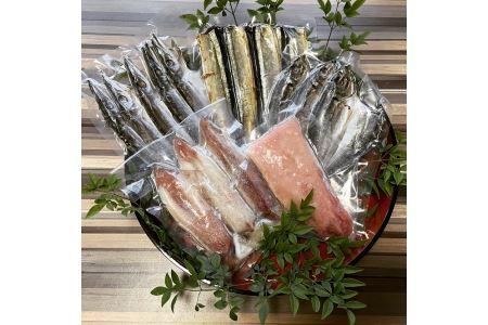 熟成マグロ 赤イカ 干物セット