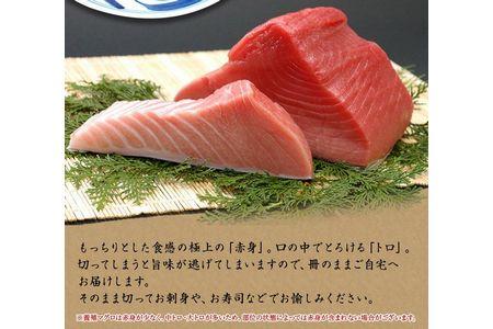 本マグロ(養殖)トロ&赤身セット 500g 鰹ひつまぶし1食付き(串本町×北山村)【nks110】