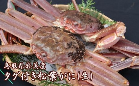 【A-9】鳥取県岩美産 タグ付き松葉がに(生)