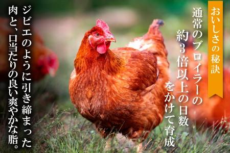 B097 地鶏の銀山赤どり精肉(まるごと2羽分)