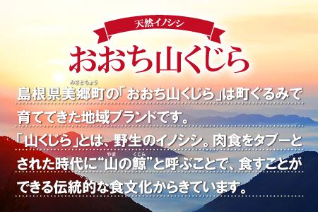 【2634-0014】おおち山くじら(イノシシ肉)味噌すき鍋セット 約400g