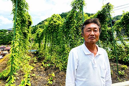 【限定30セット】栽培期間中、農薬・化学肥料不使用の自然薯500g[1~3本]【1209349】