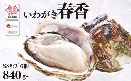 いわがき春香フルシェルSS(6個)