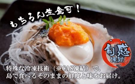 【旨味そのまま!】いわがき春香殻付きMサイズ×8個(1.88kg~2.4kg)◆ナイフ付き