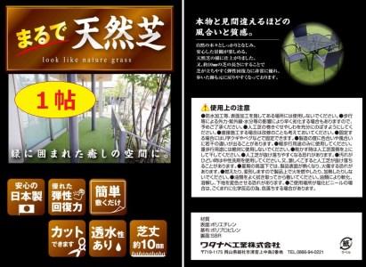 31-010-026.まるで天然芝 1帖サイズ VR-91178(T)