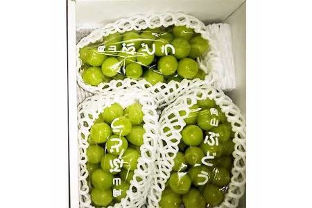 岡山県美作市産 シャインマスカット 2kg(3~5房)【1109316】