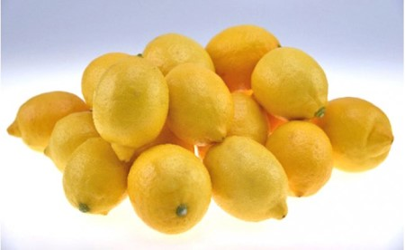 上神農園の【広島県産】レモン5.5kg 約45個入り