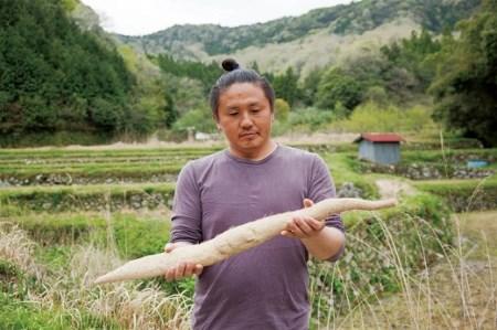 01C-035 ミライエfarm特級規格品質1本もの1キロ超え特大サイズ 最高級自然薯