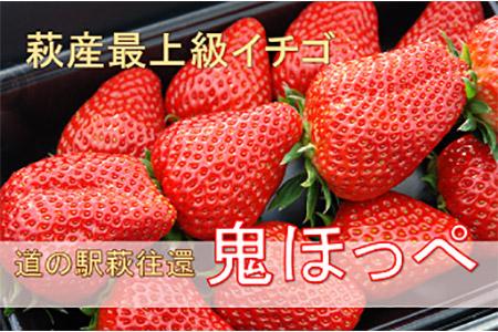 【道の駅萩往還の名物イチゴ】鬼ほっぺ特選