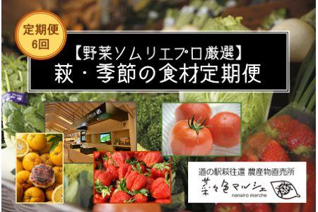 【野菜ソムリエプロ厳選】萩・季節の食材定期便【6回コース】