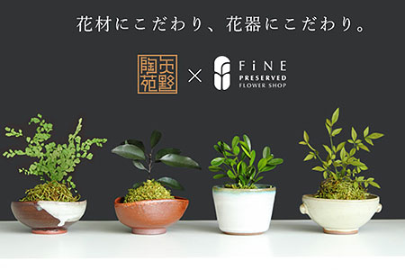 B-15 プリザーブドフラワー ぷり盆栽