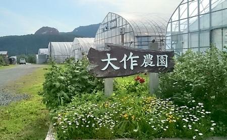 <2021年7月上旬よりお届け>北海道壮瞥町産 大作農園「夏アスパラとカラフルミニトマト」のセット約1.5kg