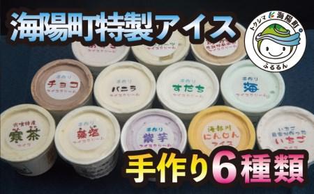 SGN09 海陽町特製アイス ユニークな味6種類セット!