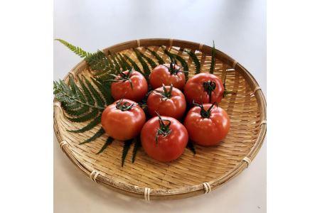 TMD02【味自慢の土耕栽培】海部清流トマト28玉セット