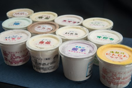 SGN10 海陽町特製アイス ユニークな味12種類セット!