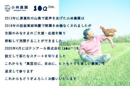 【1020】 3ヵ月定期便!こだわりの無投薬・平飼い有精卵 <毎月25個×3ヵ月お届け>