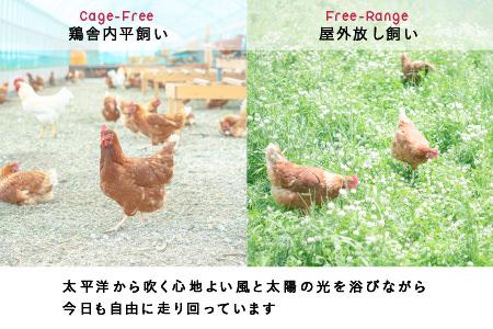 0048 無投薬・自然養鶏の平飼い自然卵50個セット