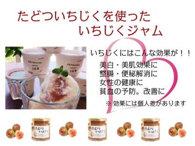 【7月下旬から8月末までの限定出荷】(予約受付中) たどついちじく×さっぱりミルクアイス(16個セット)【B-6】