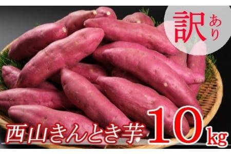 TA024【訳あり】西山きんとき芋(さつまいも)10kg