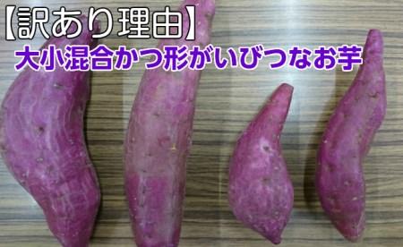 RK-56【訳あり】西山きんとき芋10kg_8,000円