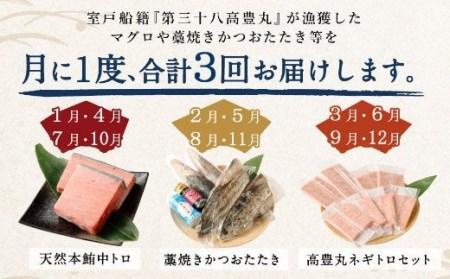 TK005海からの贈り物!マグロとカツオの定期便【3回お届け】