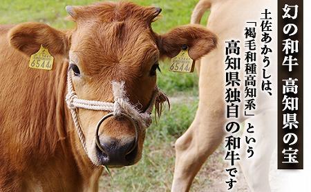 土佐あかうし【和牛ブリスケ/しゃぶしゃぶ用】
