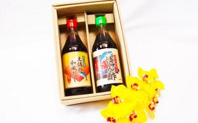 高知名産稀少果汁使用!「ぶしゅかんぽん酢」と「土佐の和風だし」2本セット