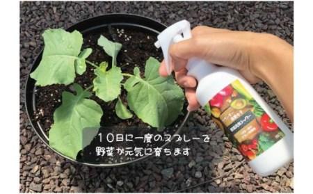 家庭菜園にオススメ! ベランダー農業女子セット 野菜が元気に育ちます!!