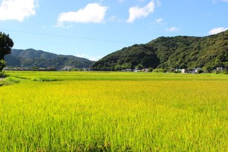 【新米】ふくい農園のおいしいお米(コシヒカリ10kg)