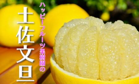 ハッピーフルーツ果樹園の土佐文旦(家庭用)5kg