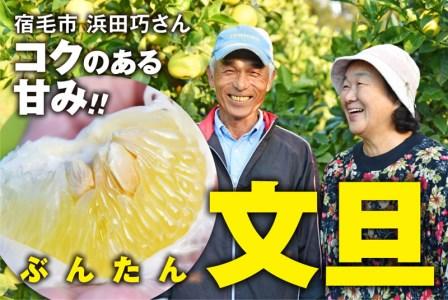 コクのある甘みがたまらない浜田巧さんのこだわり文旦(家庭用5kg)