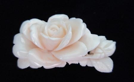 [053653]ピンク珊瑚バラの花