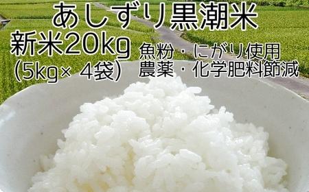 Y-1 あしずり黒潮米20㎏(5kg×4袋)