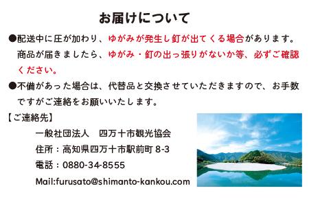 19-257.国産 四万十ひのき使用『ヒノキの折りたたみテーブル』