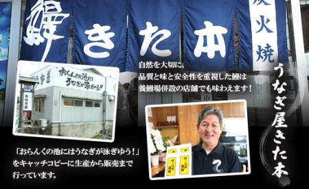 ★うなぎ屋きた本 うなぎ蒲焼き120g1尾(無頭)A-251