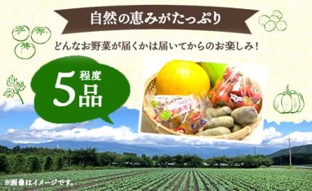 香南市のお野菜詰合せA A-262
