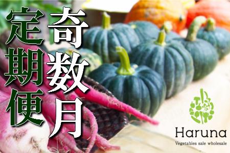 L-4 野菜★奇数月定期便 香南市のお野菜詰め合わせコース