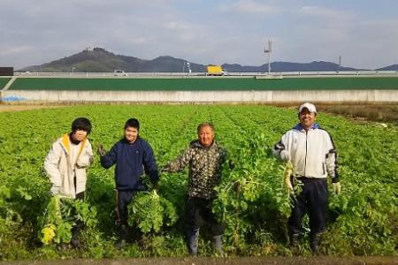★こんこん屋の季節の乾燥野菜セット A-193