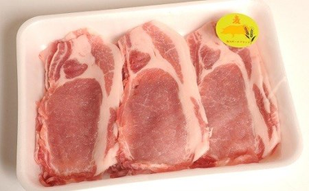 農林水産大臣賞獲得「四万十ポーク」 麦豚スライスセット 1.2kg Ahc-04
