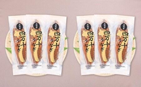 〈鰻大好き定期便〉四万十うなぎ蒲焼き≪大≫(160g x 6本)6カ月セット Sesu-04
