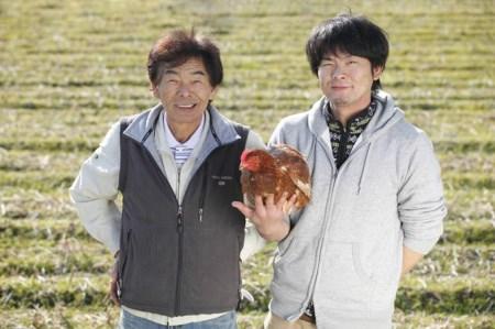 植物性のエサしか食べさせないから違いが出る!卵 6個×5P Gbn-03