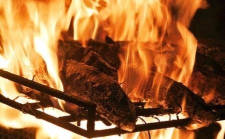 「日もどり」カツオのタタキセット(藁焼き) (4~6節)約1kg[0993]