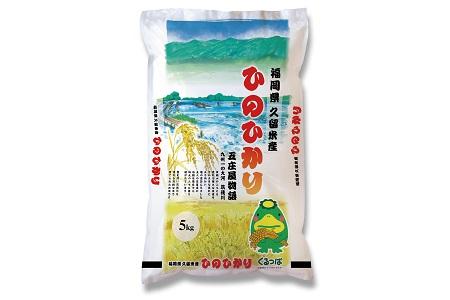 無洗米 福岡県産 令和2年産 ヒノヒカリ 10kg  (5kgx2袋)