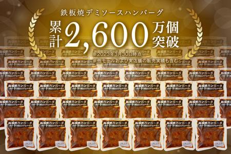 【A-191】鉄板焼ハンバーグ デミソース 20個