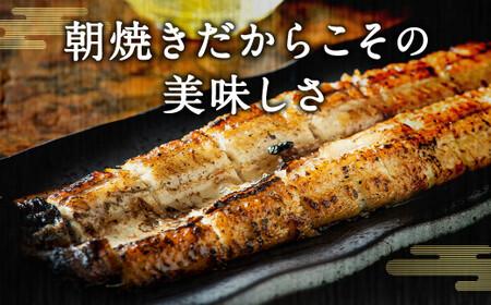 【B5-001】柳川朝焼きうなぎ(4尾入)