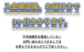 (1541)iPad Wi-Fi 32GB - ゴールド ゆくはし国際公募彫刻展「ビエンナーレ」PR企画 Yukuhashi 3D スマホで飛び出す美術館インストール済み