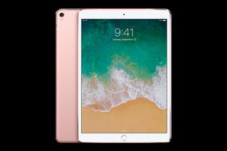 (1549)iPadPro 10.5インチ Wi-Fi 256GB - ローズゴールド ゆくはし国際公募彫刻展「ビエンナーレ」PR企画 Yukuhashi 3D スマホで飛び出す美術館インストール済み