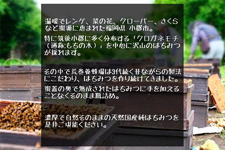 福岡県 筑後地方特産 国産天然純はちみつ「もちの木」1kg