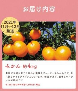 【定期便(5回発送)】果物定期便A (みかん・ネーブル・デコポン・あまおう・ニューサマーオレンジ)